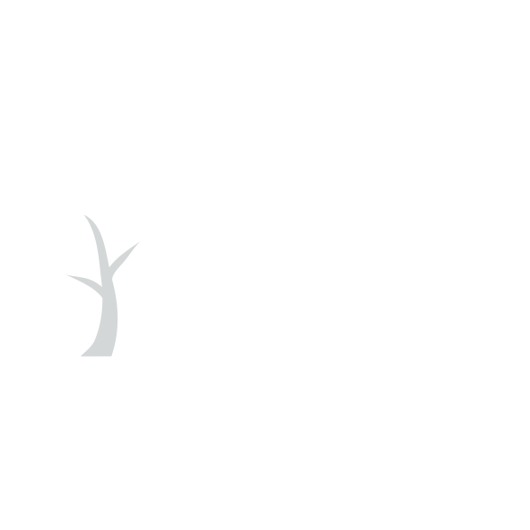 CO2 neutral logo footer